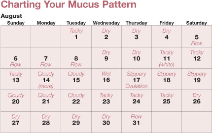 Birth control charting your mucus pattern