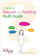 pregnant-and-parenting-guide-english.jpg